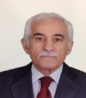 Dr Ahmed I. Mansour